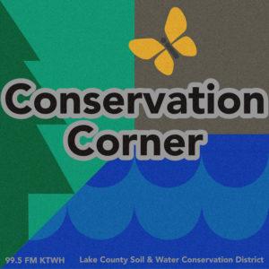 conservationcorner